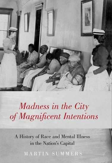 Madness in the City of Magnificent Intentions book cover